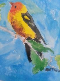 Matt's Bird