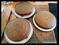 Three 8 inch cake pans