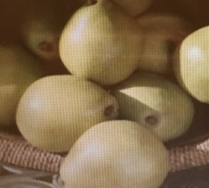 green d'Anjou pears