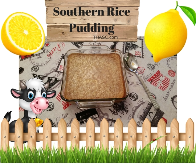 Southern Rice Pudding blog